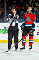 KELOWNA, BC - NOVEMBER 20:  With the play under review, linesman Cody Wanner stands stands on the ice next to Kaedan Korczak #6 of the Kelowna Rockets awaiting a decision of whether or not the Sean Gulka #17 of the Victoria Royals scored a goal on Roman Basran #30 of the Kelowna Rockets prior to sliding into the net knocking it off its posts at Prospera Place on November 20, 2019 in Kelowna, Canada. (Photo by Marissa Baecker/Shoot the Breeze)