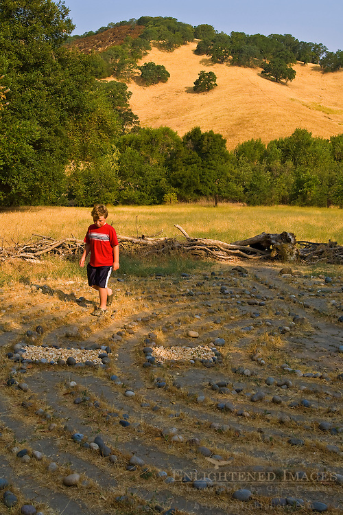 Young boy walking through a labyrinth maze, Briones Regional Park, Contra Costa County, California