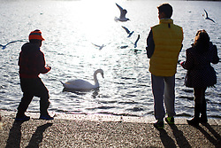 © licensed to London News Pictures. London, UK 02/01/2014. People enjoying the sunshine in Hyde Park, London on Thursday, January 2, 2014. Photo credit: Tolga Akmen/LNP