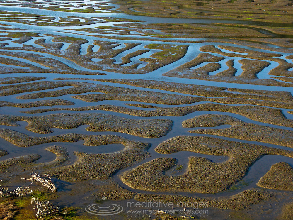 California, Point Reyes, estuary, Natural maze, low tide.