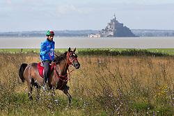 HH Sheikh Hamdan bin Mohd Al Maktoum, (UAE), Alvarez Ponton Maria, (ESP) - Endurance - Alltech FEI World Equestrian Games™ 2014 - Normandy, France.<br /> © Hippo Foto Team - Leanjo de Koster<br /> 25/06/14