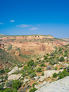 Panoramic view of Rattlesnake Canyon, Black Ridge Wilderness, Colorado Canyon National Conservation Area, near Grand Junction, Colorado, USA.