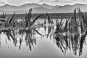 Sulpher Lake<br />Kluane National Park<br />Yukon<br />Canada