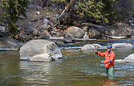 David DiPietro fishes in the Roaring Fork River upstream from Jaffe Park near Aspen, Colorado.
