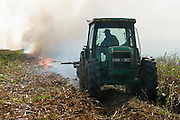 15 NOVEMBER 2005 - FRANKLIN, LA: A worker on Jesse Breaux' sugar cane farm burns a field after the cane was cut from the field during the 2005 sugar cane harvest. The fields are burned to remove the shuck and trash left from the cane cutting. Louisiana is one of the leading sugar cane producing states in the US and the economy in southern Louisiana, especially St. Mary and Iberia Parishes, is built around the cultivation of sugar. Statewide, more than 460,000 acres of land is cultivated with sugar cane and more than 27,000 people work in the sugar industry in Louisiana. Sugar growers in the area are concerned that trade officials will eliminate sugar price supports during upcoming trade talks for the proposed Free Trade Area of the Americas (FTAA). They say elimination of price supports will devastate sugar growers in the US and the local economies of sugar growing areas. They also say it will ultimately lead to higher sugar prices for US consumers.  PHOTO BY JACK KURTZ