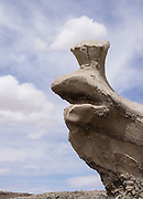 Snail-shaped rock, Bisti/De-Na-Zin Wilderness, south of Farmington, in San Juan County, New Mexico, USA. This fantasy world of strange rock formations is made of interbedded sandstone, shale, mudstone, coal, and silt. These rock layers have weathered into eerie hoodoos (pinnacles, spires, and cap rocks). This was once a riverine delta west of an ancient sea, the Western Interior Seaway, which covered much of New Mexico 70 million years ago. Swamps built up organic material which became beds of lignite. Water disappeared and left behind a 1400-foot (430 m) layer of jumbled sandstone, mudstone, shale, and coal. The ancient sedimentary deposits were uplifted with the rest of the Colorado Plateau, starting about 25 million years ago. Waters of the last ice age eroded the hoodoos now visible. The high desert widerness of Bisti is managed by the US Bureau of Land Management (BLM).