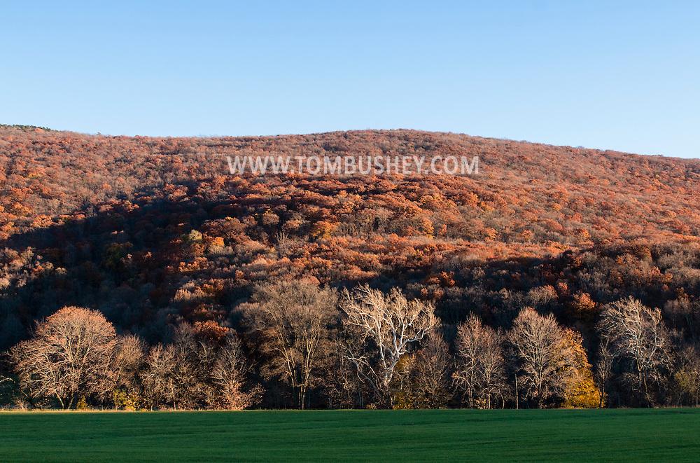 Salisbury Mills, New York - Autumn scenes on Nov. 8. 2015.