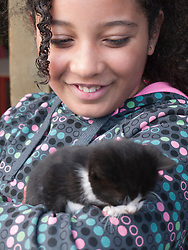 Girl stroking a kitten