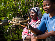 Mfaume Mohammed (pictured right) and Sada Juma inspect a crab farmed with the guidance of Kenyan VSO volunteer Maurice Kwame Nyambok. This crab fattening project will give the local village community a chance to access the tourism market on Zanzibar, Tanzania. Currently Zanzibars hotels import 80 % of their produce and so opening up the market to the locals will help generate a vital income