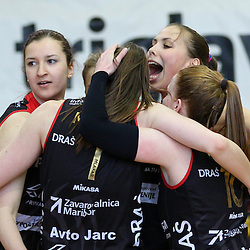 20150414: SLO, Volleyball - 1. DOL, finale, Calcit Volleyball vs Nova KBM Branik Maribor