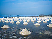 28 MARCH 2018 - BAN LAEM, PHETCHABURI, THAILAND: Piles of a salt in a field during the 2018 salt harvest in Petchaburi province, about two hours south of Bangkok. Sea salt is made in provinces south of Bangkok by flooding fields with ocean water after the rainy season. As the fields dry out from evaporation, workers go into the fields and gather the salt left behind.        PHOTO BY JACK KURTZ