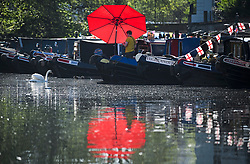© Licensed to London News Pictures. 05/05/2018. London, UK. A swan swims past a canal boat as the Canalway Cavalcade festival takes place in Little Venice, West London on Saturday,  May 5th 2018. Inland Waterways Association's annual gathering of canal boats brings around 130 decorated boats together in Little Venice's canals on May bank holiday weekend. Photo credit: Ben Cawthra/LNP