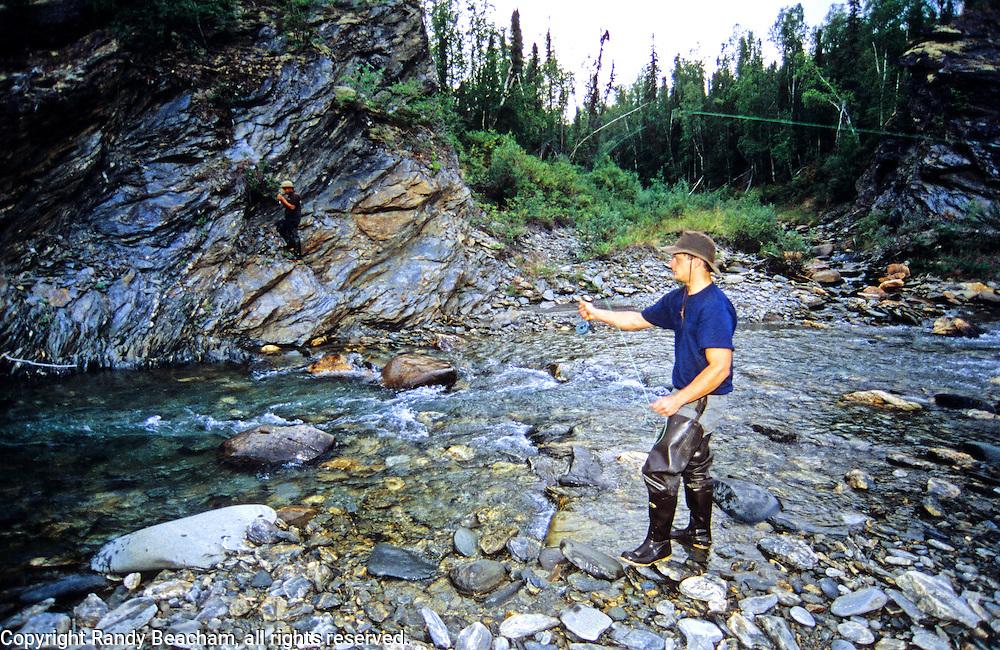 Fly fishing for grayling on creek in Alaska. Central Brooks Range north of Bettles, Alaska