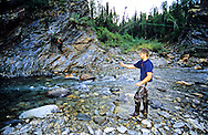 Fly fishing for grayling on creek in Alaska. Central Brooks Range north of Bettles, Alaska