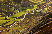 From the top of a decidedely pointy Welsh mountain you could see the huge gentle bowl of the valley and through it's cold air a river burnt along it, cutting and diving in bright sunlight, sparkling and dancing as it raced for the warmer waters of the Irish Sea. Isolated farms and cottages draw from it's course.