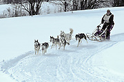 For many years the sled dog races gave locals a chance to get together and watch some fun racing. The races, at least for now, are no longer held.