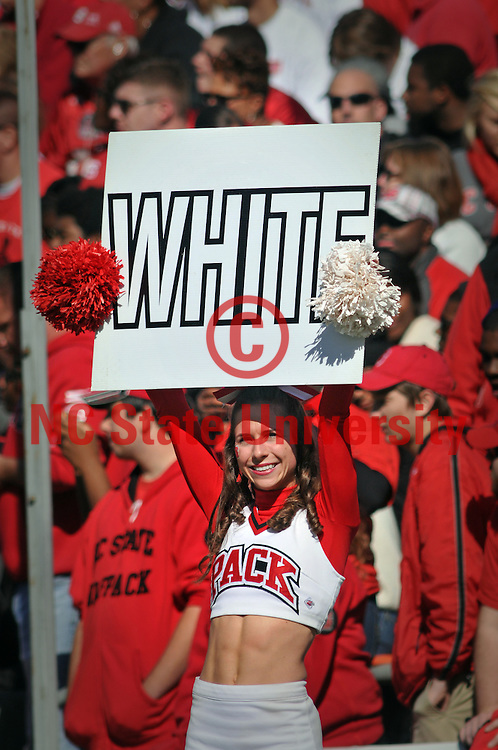 Cheerleader cheers on the Wolfpack in Carter-Finley Stadium.