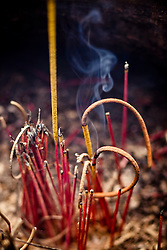 Incense sticks in a censer of Quan Thanh Temple, Hanoi, Vietnam, Southeast Asia.
