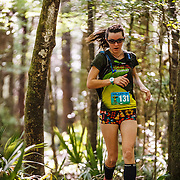 Images from the 2016 Wambaw Swamp Stomp in the Francis Marion National Forest from the Witherbee Ranger Station near Charleston and Moncks Corner, South Carolina.