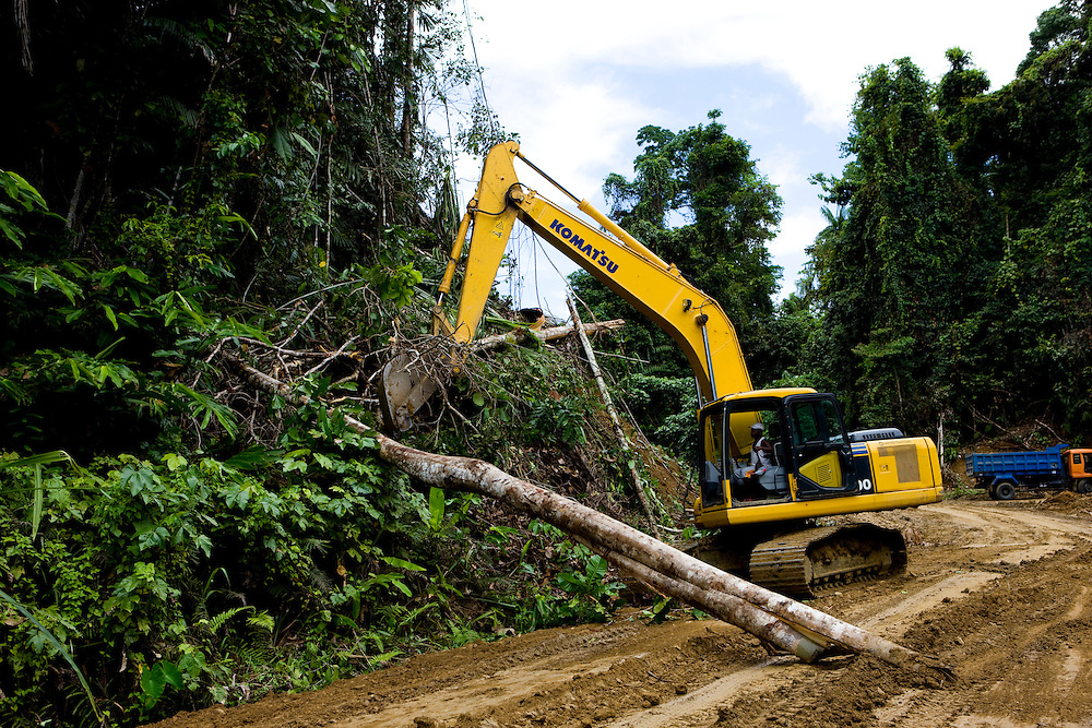 Workers clear trees to expand the road for the Trans West Papua Highway, Sept. 12, 2008. The highway is a  controversial project that will improve communications and bring easy access to the Papuan rainforest for logging and mining companies..Daniel Beltra/Greenpeace
