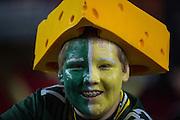 NFL Divisional Playoffs: Green Bay Packers vs Arizona Cardinals<br /> Green Bay Fan<br /> NFL Divisional Playoffs: Green Bay Packers vs Arizona Cardinals<br /> University of Phoenix Stadium/Glendale, AZ <br /> 01/16/2016<br /> SI-181 TK1<br /> Credit: John W. McDonough