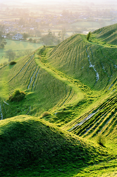 Hambledon Hill prehistoric Iron Age hill fort, Dorset, England.  Part of massive rampart earthworks on the N.W. corner.