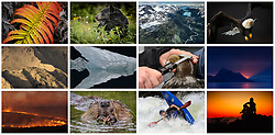 Examples of photographs available for licensing by John L. Dengler. Dengler Images, LLC specializes in outdoor images on outdoor topics including wildlife, nature, landscape, outdoor sports and recreation, travel, and our environment. Our  outdoor stock photo archive collection of images includes landscape and wildlife photos from Denali National Park in Alaska, bald eagles on the Chilkat River in Alaska, and other National Parks as diverse as Hawaii Volcanoes National Park and the National Tallgrass Prairie in Kansas. We also have done extensive whitewater kayaking and rafting photography on the Upper Gauley River in West Virginia.