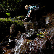 Hiker Julie Paller of Washington navigates a stony creek along the Ngobe Indian trail in the Cloud Forest near Boquete, Panama.  The trail is still used by the indigenous Panamanians to get from the province of Bocas del Toro to Boquete.