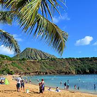 O'ahu, Hawai'i - One