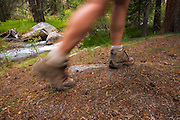 Hiker's legs blurred on trail, John Muir Wilderness, Sierra Nevada Mountains, California USA