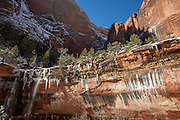 A nearly frozen trickle of a waterfall flows over the edge of the sandstone cliff that stands over Emerald Pool in Zion National Park, Utah.