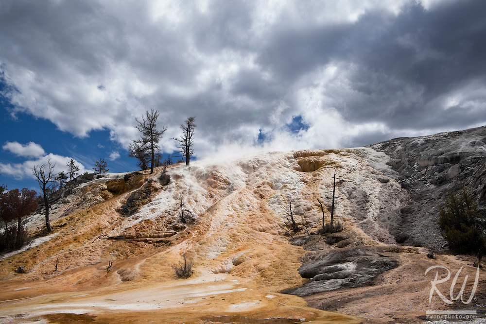 Mammoth Hot Springs Minerva Terrace, Yellowstone National Park, Wyoming