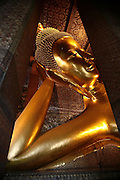 Thailand, Bangkok: Wat Pho, Wat Pho, or the Temple of the Reclining Buddha, is the oldest and largest Buddhist temple in Bangkok. It is home to more Buddha images than any other Bangkok temple and it shelters the largest Buddha in Thailand.