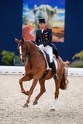 FAURIE Emile (GBR), Dono di Maggio<br /> Hagen - Horses and Dreams meets the Royal Kingdom of Jordan 2018<br /> Grand Prix de Dressage / Special Tour<br /> 28. April 2018<br /> www.sportfotos-lafrentz.de/Stefan Lafrentz
