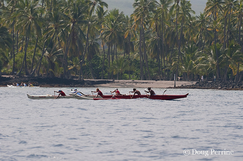 outrigger canoe paddlers approach finish line in Keoua Canoe Club's Calvin Kelekolio long-distance canoe race, Honaunau, Kona, Hawaii ( Central Pacific Ocean )
