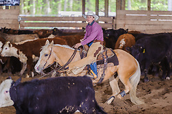 May 20, 2017 - Minshall Farm Cutting 3, held at Minshall Farms, Hillsburgh Ontario. The event was put on by the Ontario Cutting Horse Association. Riding in the 5,000 Novice Horse Class is Michelle Waters on Genuine Whyte Gold owned by Noreen Whyte.