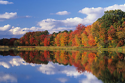 North America, United States, Massachusetts, Acton. Reflection of autumn foliage and clouds in pond