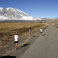BISHOP, CA, January 19, 2008: Ryan Hall is timed on his run by coach Terrence Mahon, right, while team members encourage him while training at the base of the Eastern Sierra mountains outside the town of Bishop, California about 30 miles from Mammoth Lakes. The high altitude and clean air provide a picturesque and challenging training ground for the Olympic hopeful.