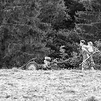 Rural Life (BW)