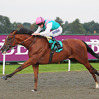Omnipresent and Ryan Moore winning the 7.10 race