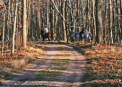 Couple on late fall afternoon ride along a trail through the Allaire State Park, New Jersey