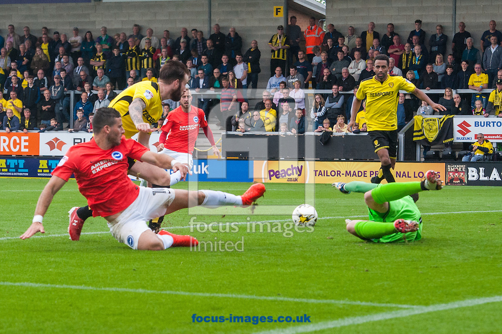 Tomer Hemed of Brighton and Hove Albion narrowly misses connecting with a cross during the Sky Bet Championship match at the Pirelli Stadium, Burton upon Trent<br /> Picture by Matt Wilkinson/Focus Images Ltd 07814 960751<br /> 17/09/2016