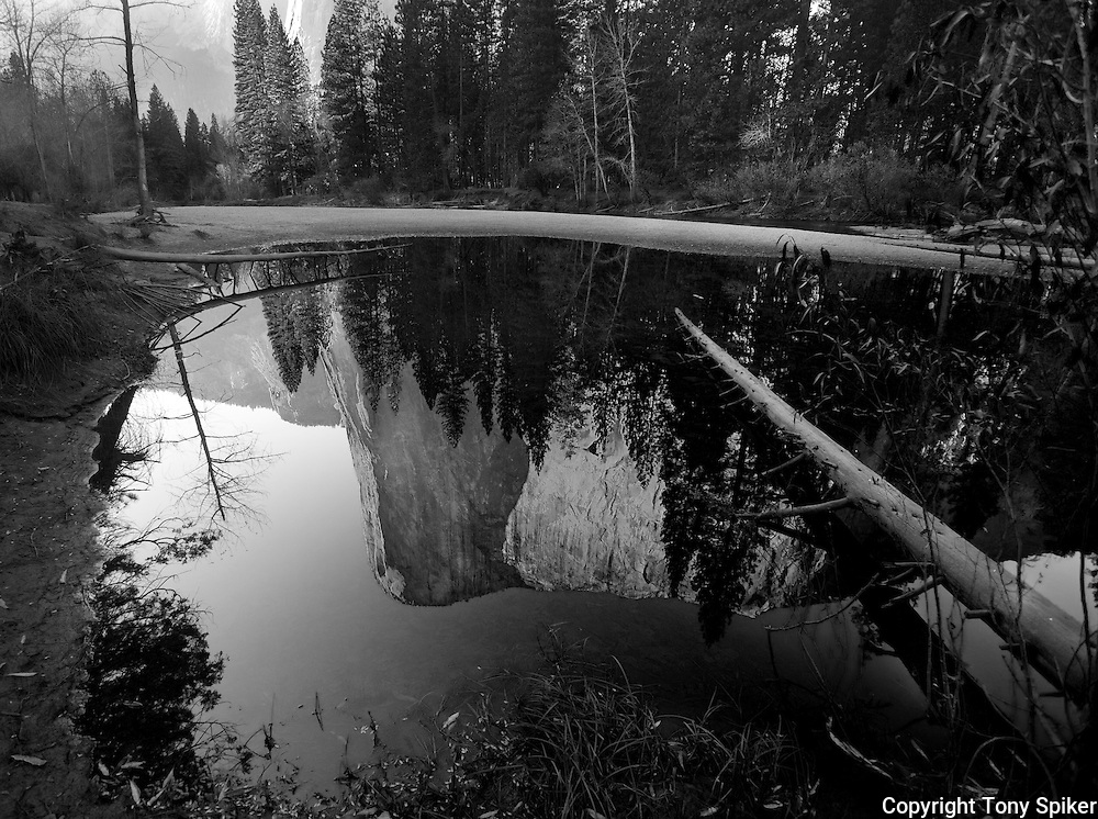 """El Capitan Reflections 2"" - A black and white photograph of El Capitan reflecting in a pool along the Merced River"