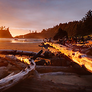 The warm light of fading day lights up the wood left on Second Beach in Olympic National Park, Washington.
