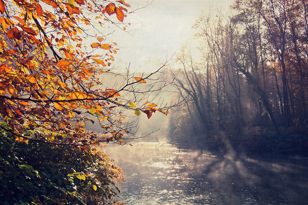 Rising morning fog and sunrise on river Wupper in autumn.<br /> <br /> Prints &amp; iPhoneCases from S6: http://society6.com/DirkWuestenhagenImagery/Light-Painting-K2F_Print