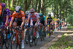 Peloton with Fabio Jakobsen (NED) of Deceuninck - Quick Step (BEL,WT,Specialized) during 2019 Dutch National Road Race Championships Men Elite, Ede, The Netherlands, 30 June 2019, Photo by Pim Nijland / PelotonPhotos.com | All photos usage must carry mandatory copyright credit (Peloton Photos | Pim Nijland)
