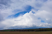 Cloud formation Cumulus, Towering Cumulus (centre) and Cumulonimbus above agricultural land at Swinbrook in the Cotswolds,  UK