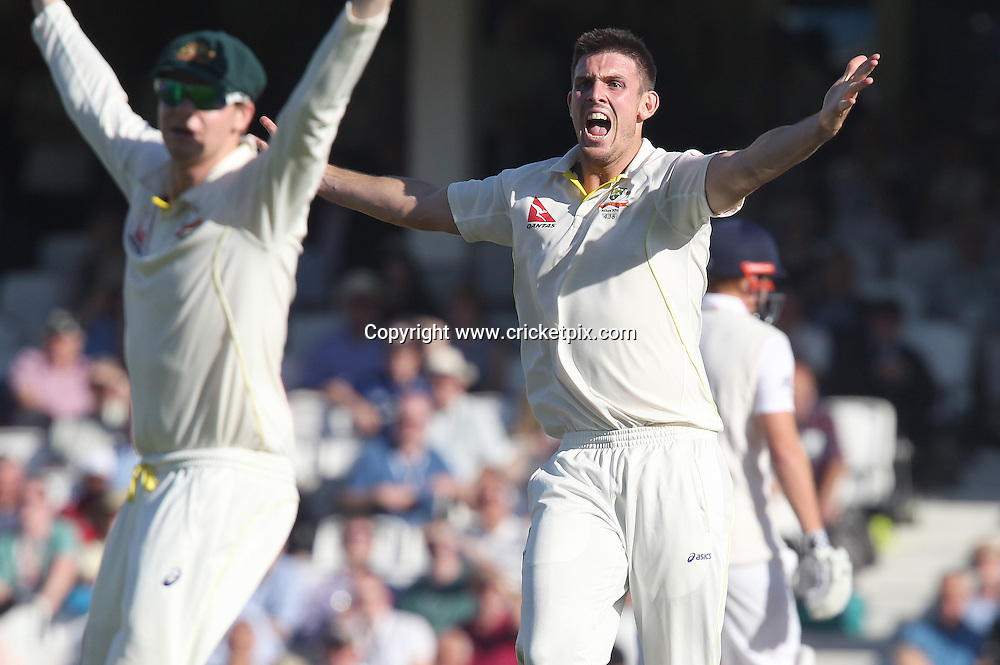 Mitchell Marsh (right) of Australia pleads with captain Michael Clarke to review an appeal against Joe Root of England which was given out. England v Australia, 5th and final Ashes Test, Day 2, Oval, London. 21/08/2015 © Matthew Impey/www.cricketpix.com
