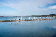 Crabbing on the public pier in Bandon, Oregon