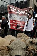 25/02/14 - PARIS - FRANCE - Manifestation des eleveurs ovins pour informer le public des problemes rencontres avec ce predateur. SIA 2014- Photo Jerome CHABANNE
